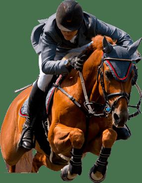 Cavalo Pulando